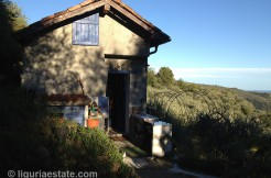 cottage for sale 35 m² liguria imp-41903A 1
