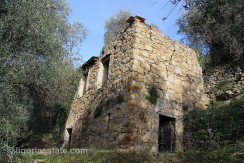 lot for sale 294 m² liguria imp-41932A 12