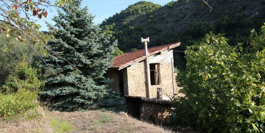 Lot for sale 8240 m²