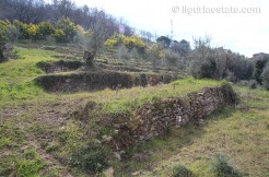 lot for sale 8308 m² liguria imp-41940a 6