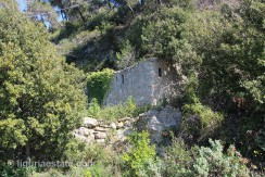 lot for sale 3000 m² liguria imp-41953a 10