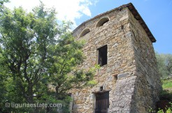 lot for sale 6000 m² liguria imp-41968a 8