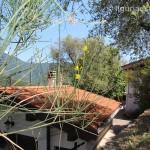 cottage for sale 100 m² liguria imp-41976a 45