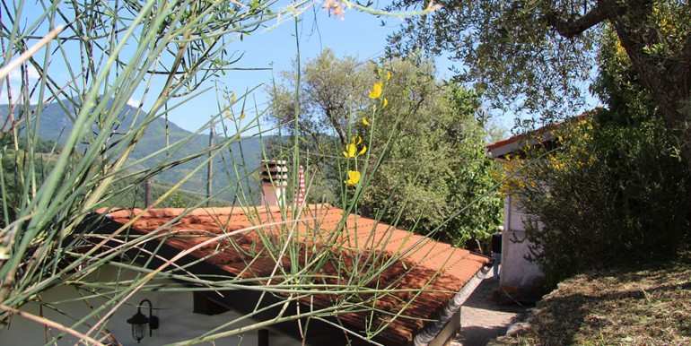 cottage-for-sale-100-liguria-imp-41976a-45