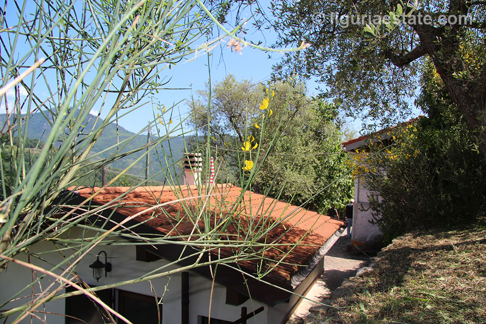 Cottage for sale 100 m²