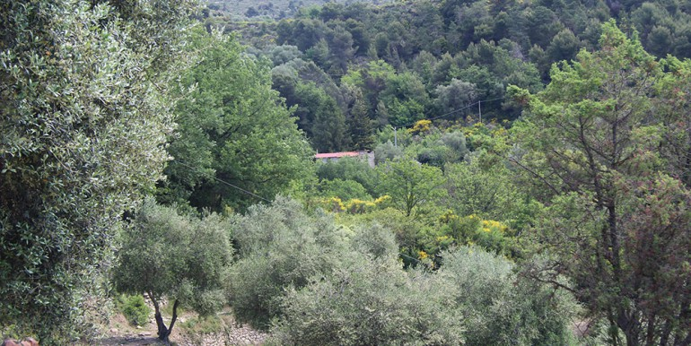 rustico-for-sale-150-liguria-imp-41974a-12