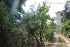apartment for sale 150 m² liguria imp-41988 21