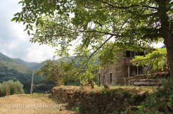 cottage for sale 70 m² liguria imp-41990 30