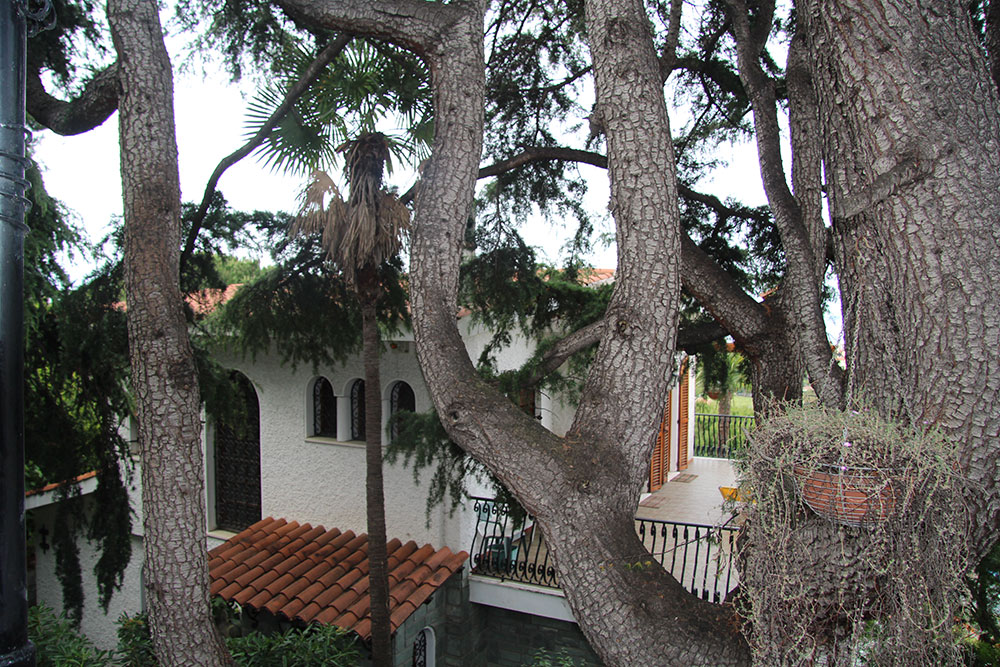 Bordighera villa for sale 350 41975 069