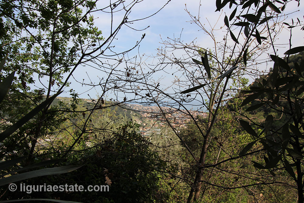Camporosso country house for sale 146 imp 43064 23