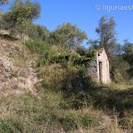 Dolceacqua lot for sale 7639 imp 43053 01