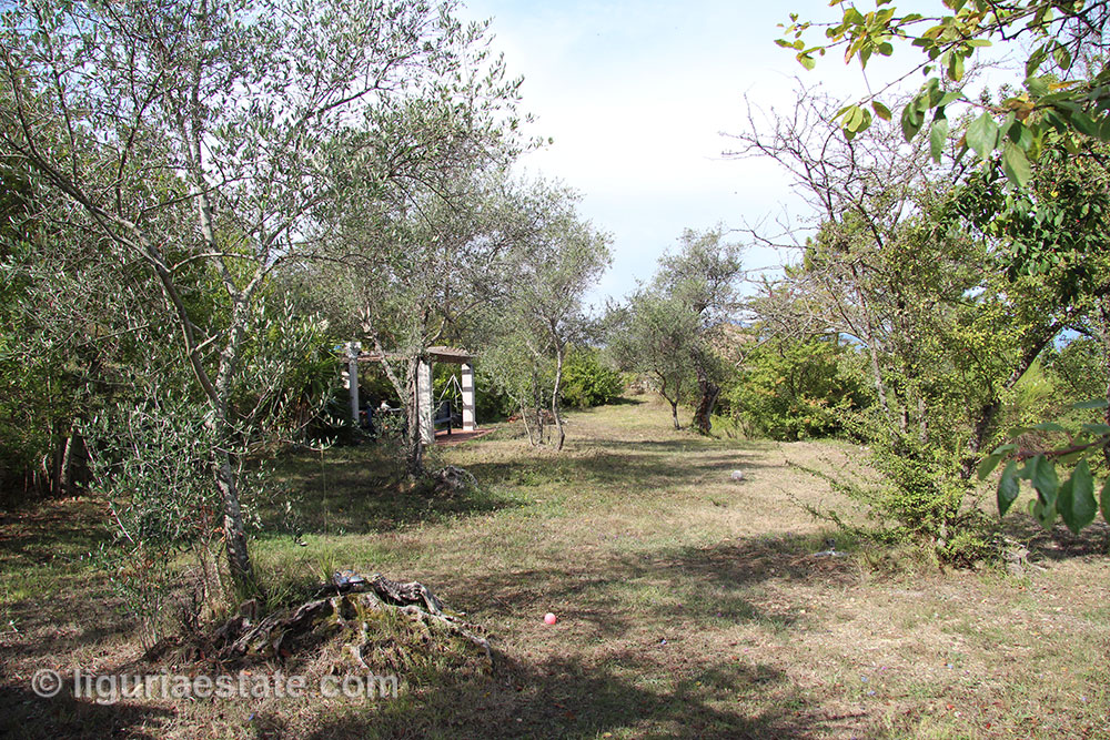 cottage-for-sale-120-99-02