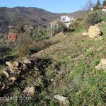 lot for sale 1000 m² liguria imp-42035 10