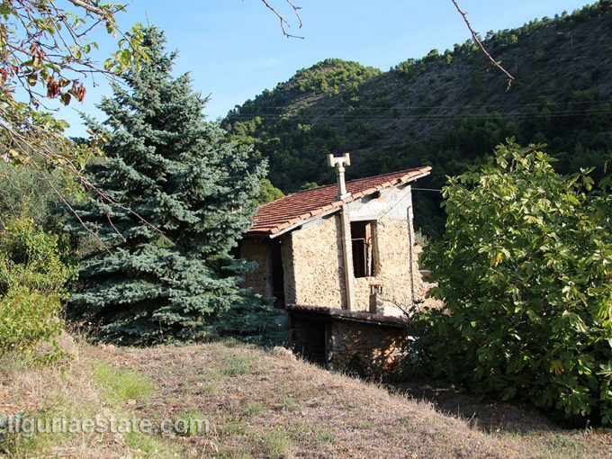 lot for sale 8240 m² liguria imp-41909a 3