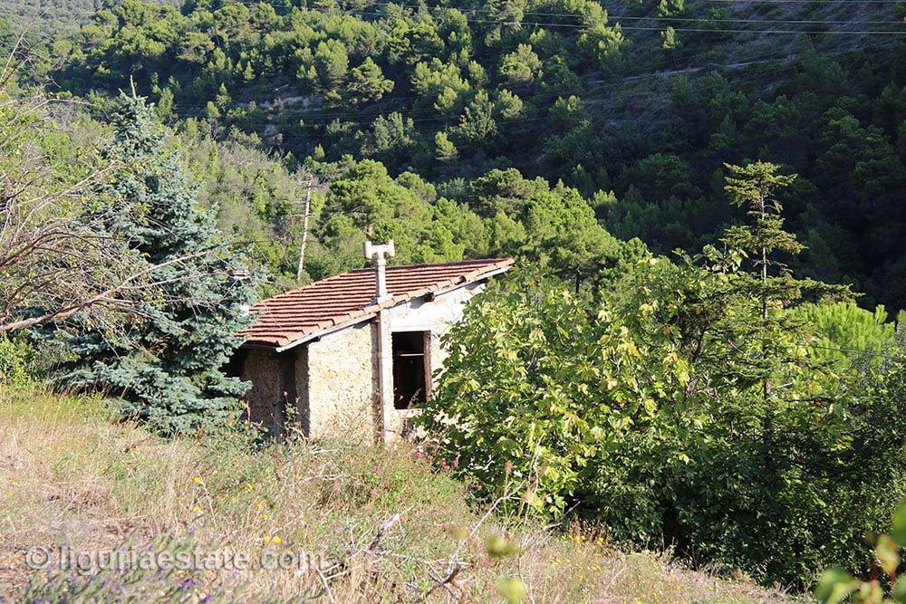 lot-for-sale-8240-liguria-imp-41909a-18