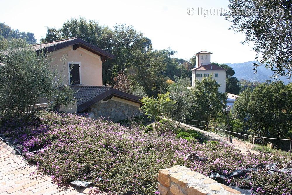mansion-for-sale-360-liguria-imp-41902a-06