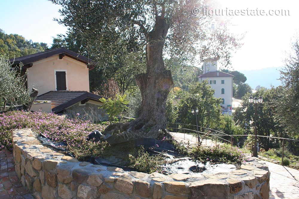 mansion-for-sale-360-liguria-imp-41902a-12