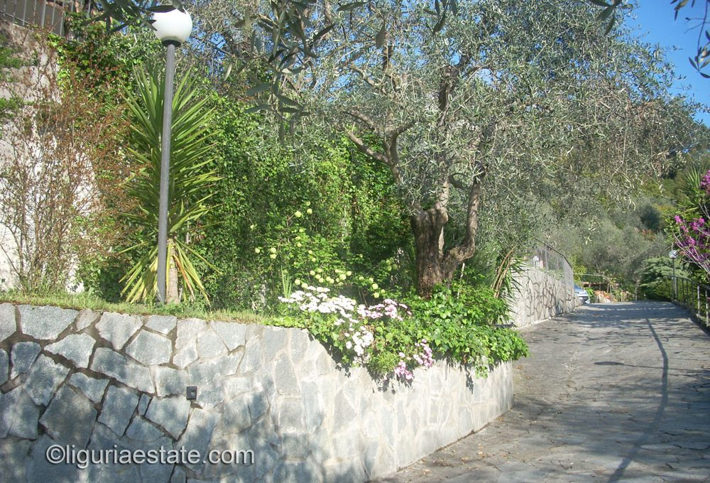 villa-for-sale-200-liguria-imp-41900A-18
