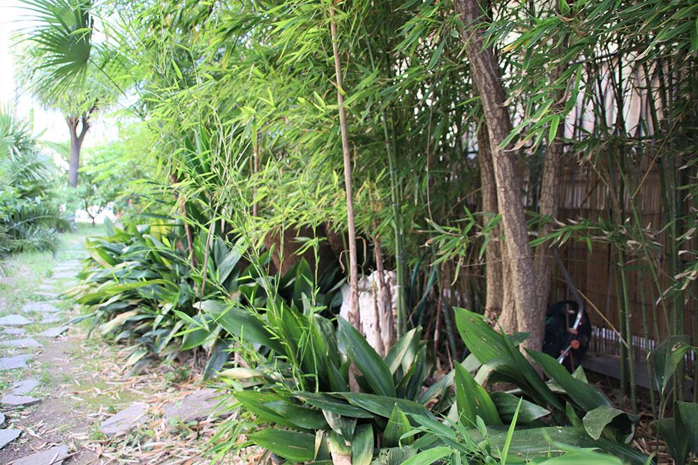 Bordighera liguria villa for sale 1000 41913 036
