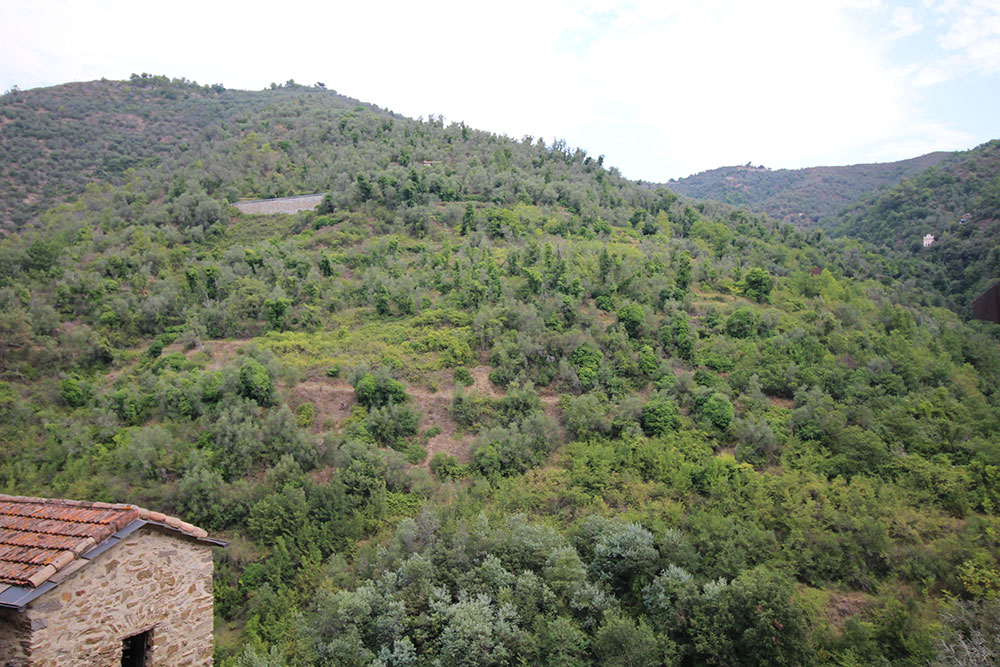 Apricale liguria apartment for sale 70 imp 44045 007