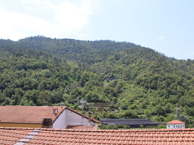 Pigna liguria apartment for sale 58 imp 44054 014