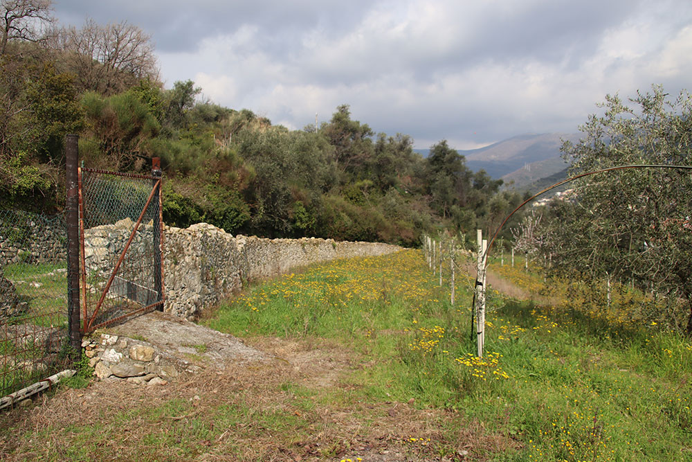 Dianno castello liguria country house for sale 199 imp 44066 020