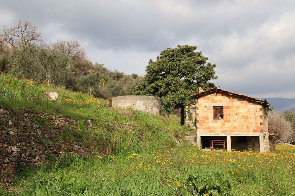 Dianno castello liguria country house for sale 199 imp 44066 022